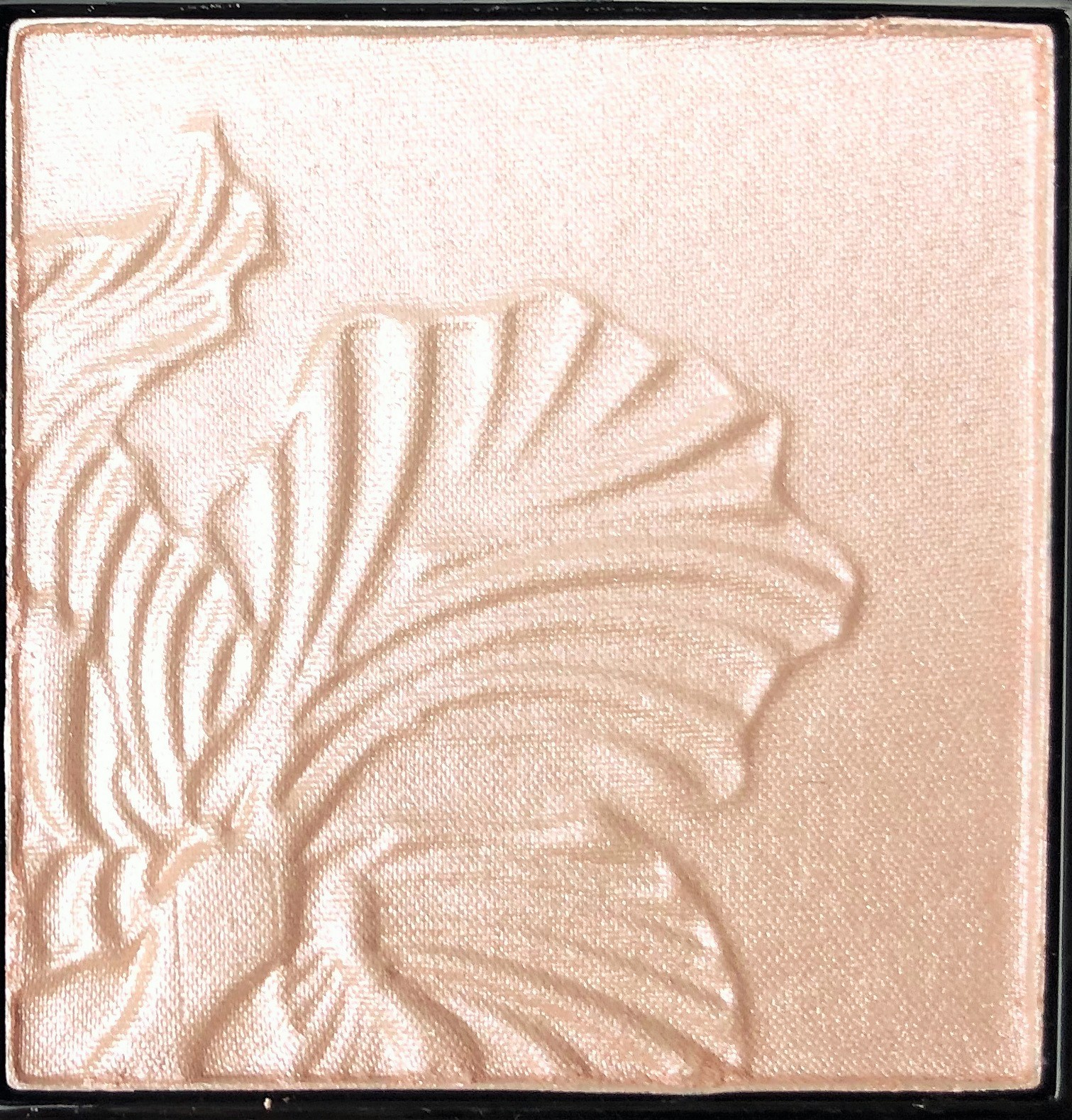 Review Wet n Wild Blossom Glow Megaglow Highlighter Powder (2)