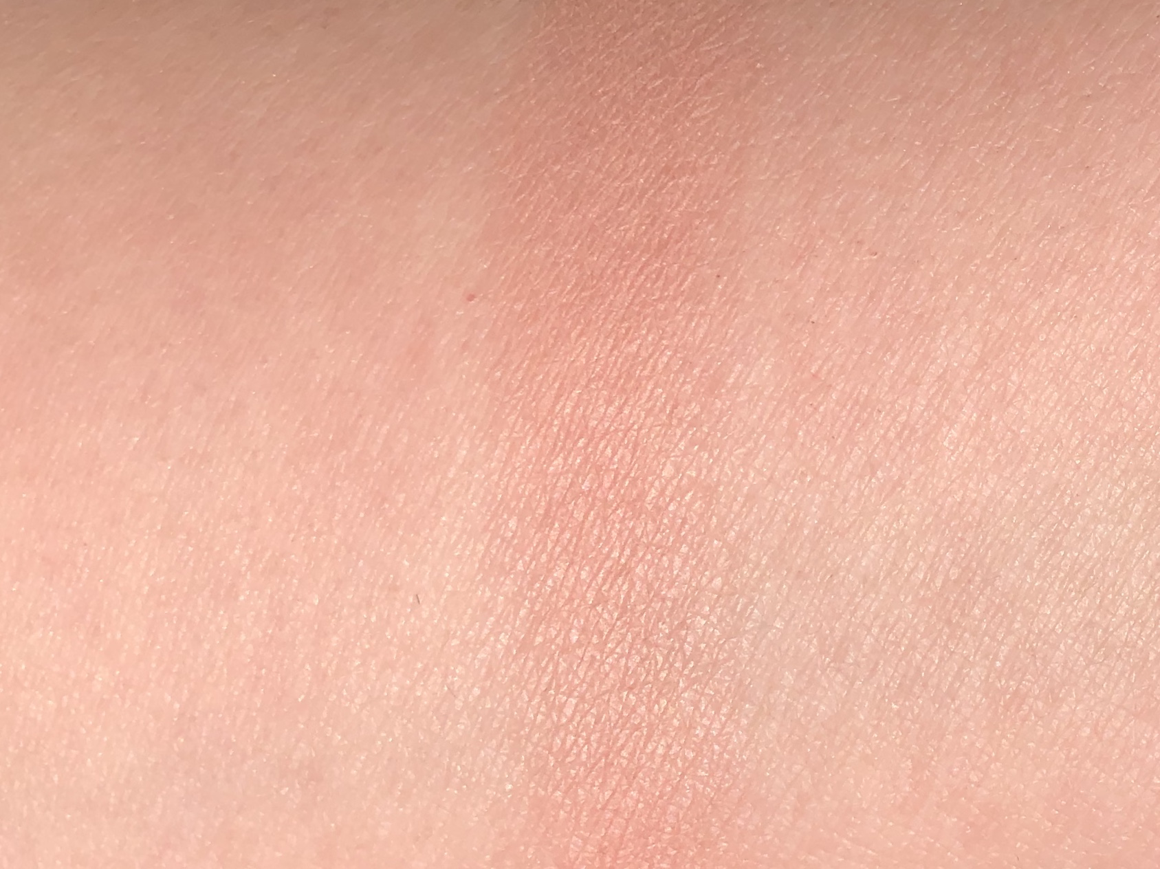 Essence 40 Blossom Me Up! Matt Touch Blush Review 4