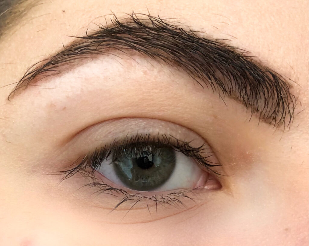 Catrice Brow Definer Brush Pen, Catrice Brow Definer Brush Pen review , Catrice Brow Definer brush , Catrice Brow Definer review , Catrice Brow Definer 020 , makeup , beauty , catrice ,